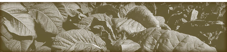 Alexander Sinkler and his family grew tobacco in Prince William County and in Bedford, Virginia